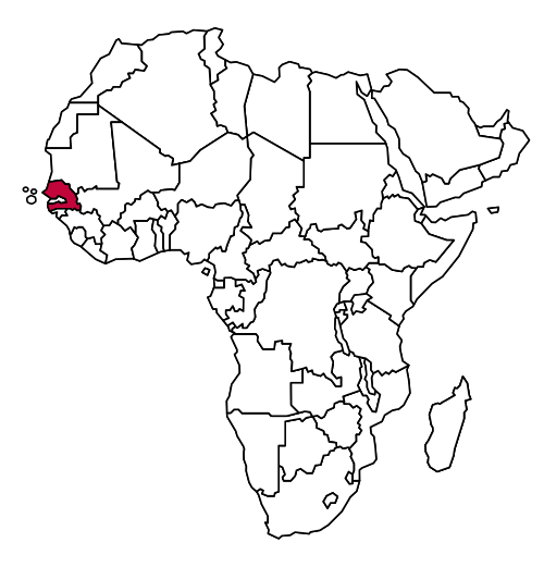 Freiwilligendienst in Senegal
